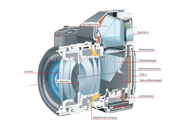 cross section of a reflex camera image